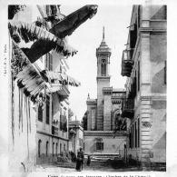 egypt-ftdc_686_2-copy